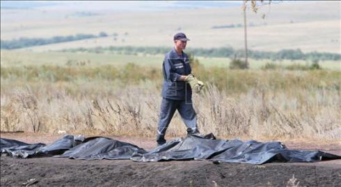Un trabajador ucraniano pasa delante de las bolsas negras con los cuerpos de las víctimas del derribo del vuelo MH17 de Malaysia Airlines, cerca de Grabovo, Donetsk (Ucrania). EFE